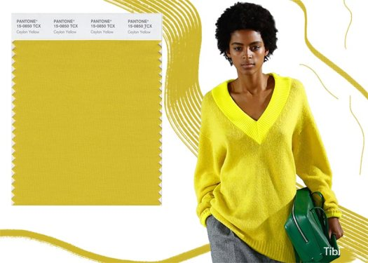 fall_winter_2018_2019_Pantone_colors_trends_Ceylon_Yellow